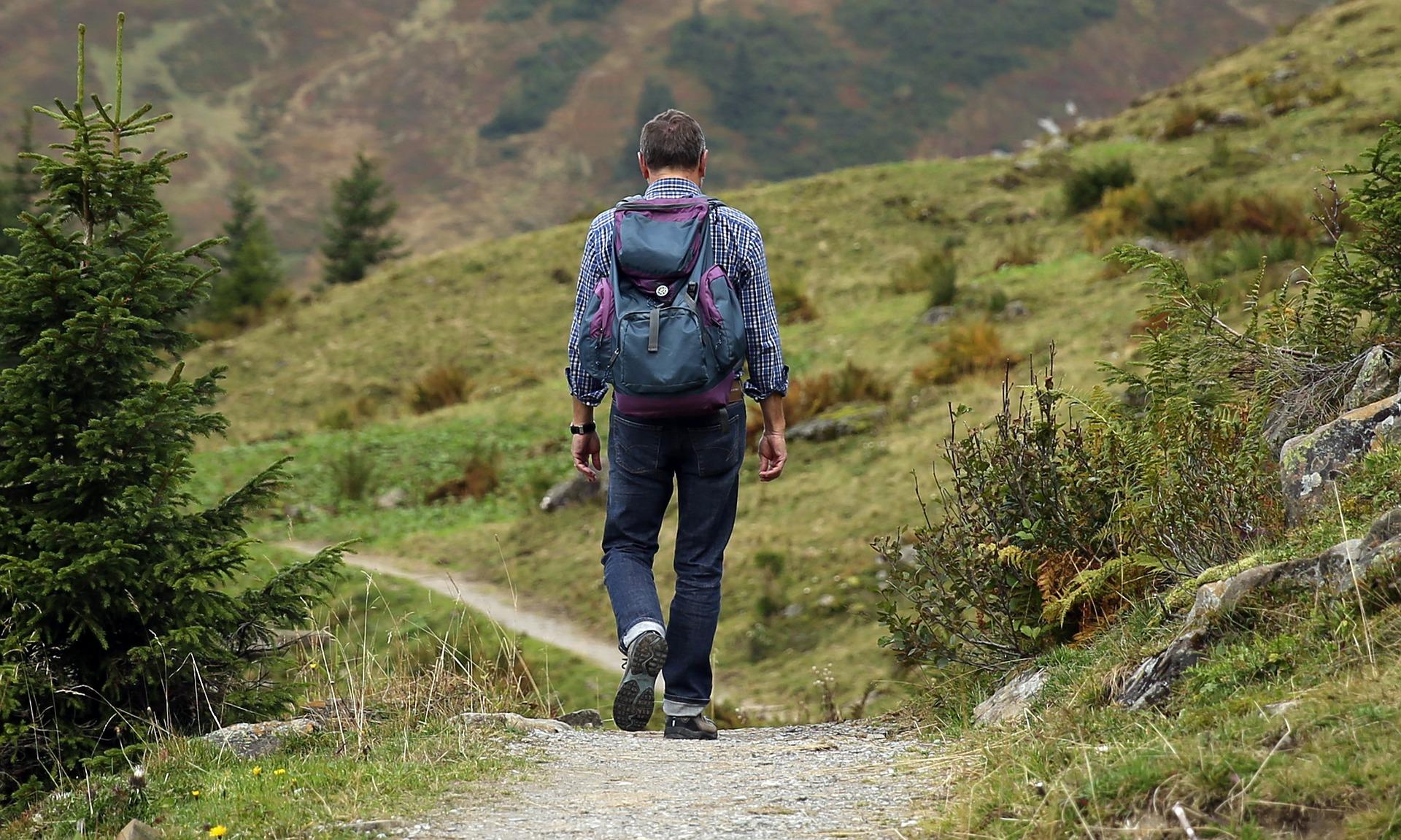 camino-naturaleza-hombre